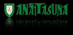 anaitasuna